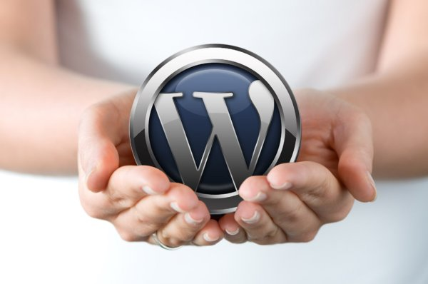 WordPress: Protect your website from cyber criminals