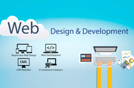 Attract More Human Traffic With Website Development Services