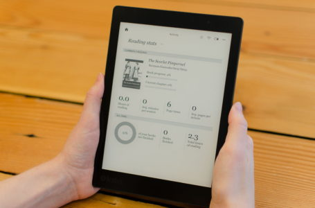 Everything You Wanted to Know About E-Book Readers