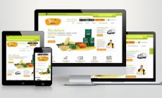 10 Important Points to Consider to Launch Your First Ecommerce Website